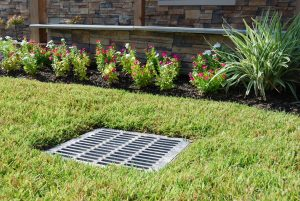Finished french drain with grass
